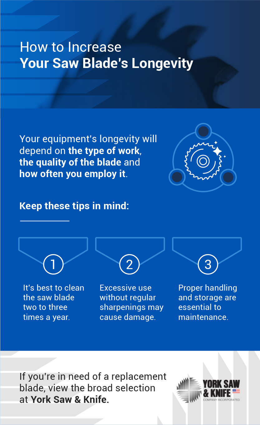 infographic on when to replace circular saw blade